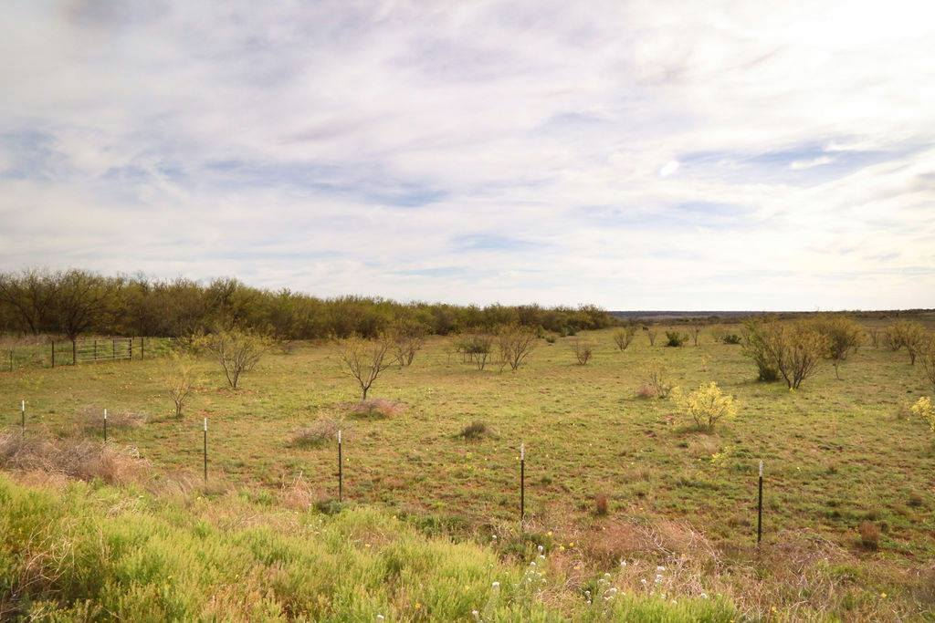 Expansive Land for Sale in Midland, TX
